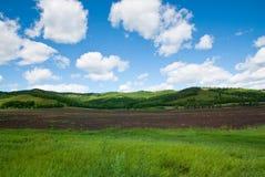 Cielo blu su Flieds nero Fotografia Stock Libera da Diritti