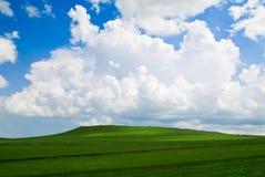 Cielo blu sulla pianura di Hulun Buir Fotografia Stock