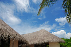 Cielo blu tropicale Fotografia Stock