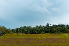 Cielo blu verde della terra Fotografia Stock Libera da Diritti