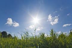 Cielo caldo pieno di sole di estate Fotografia Stock Libera da Diritti