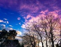 Cielo colorido Imagenes de archivo