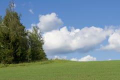 Cielo con las nubes y el prado verde Foto de archivo