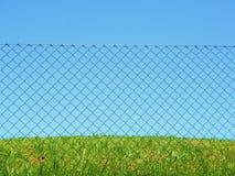 Cielo de la hierba de la cerca de la conexión de cadena Imagen de archivo libre de regalías