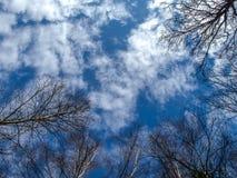 Cielo de la primavera Imagen de archivo
