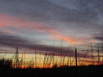 Cielo de la puesta del sol del invierno detrás de la cerca Sihouette del alambre de púas con las nubes anaranjadas púrpuras rosad Fotos de archivo
