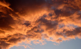 Cielo de oro Fotos de archivo