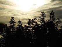 Cielo de plata Fotos de archivo