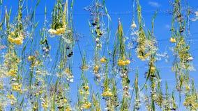 Cielo decorato con i fiori della molla Fotografie Stock Libere da Diritti