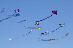 Cielo dei cervi volanti Fotografia Stock