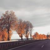Cielo del invierno del árbol del camino imágenes de archivo libres de regalías
