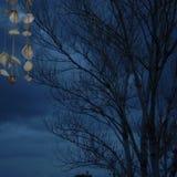 Cielo del mar foto de archivo libre de regalías
