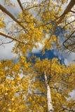Cielo del otoño Fotografía de archivo libre de regalías