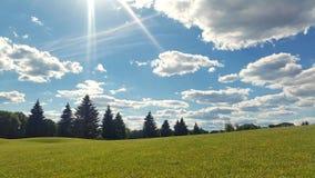 Cielo del sole e dell'erba verde Immagine Stock Libera da Diritti