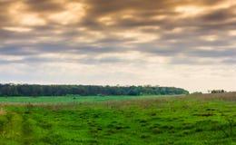Cielo del trueno Imagen de archivo