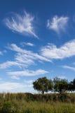 Cielo 1 del verano Fotografía de archivo
