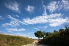 Cielo 2 del verano Imágenes de archivo libres de regalías