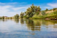 Cielo dell'albero del fiume della natura del paesaggio Fotografia Stock