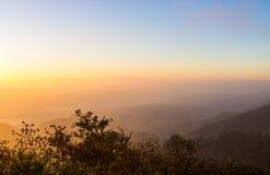 Cielo di alba con il cespuglio della siluetta Fotografia Stock