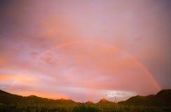 Cielo di alba di tramonto del cane di Sun Fotografia Stock