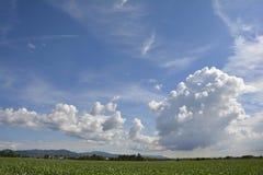 Cielo 7 di Friulian Fotografia Stock