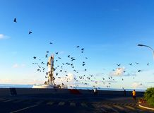 Cielo di mattina Fotografie Stock