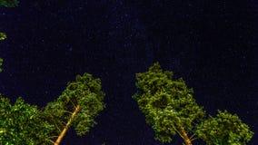 Cielo di mezzanotte Immagini Stock