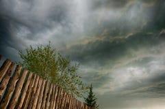 Cielo di sera di estate dopo la pioggia Fotografia Stock