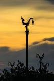 Cielo di sera a Thanon Utthayan Immagini Stock Libere da Diritti