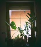 Cielo di sorveglianza dalla finestra fotografie stock libere da diritti