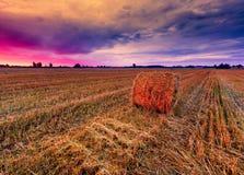 Cielo di tramonto sopra il campo con le balle della paglia Immagini Stock