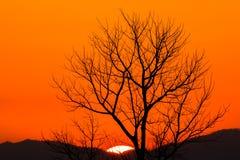 Cielo dramático colorido con la nube en la puesta del sol foto de archivo