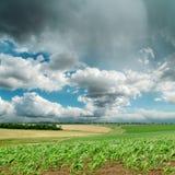 Cielo dramático sobre campo verde Imagen de archivo