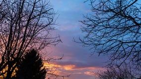 Cielo drammatico al tramonto nel legno Immagine Stock Libera da Diritti