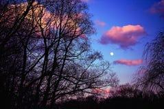 Cielo drammatico con la luna piena Fotografia Stock