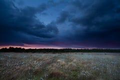 Cielo drammatico della tempesta sopra la palude al tramonto Immagine Stock