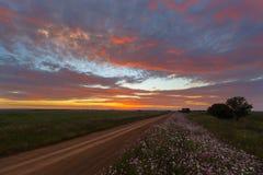 Cielo e fiori Colourful fotografia stock