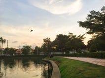 Cielo e fiume in cui abbia un uccello Immagini Stock Libere da Diritti