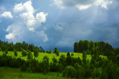 Cielo e foresta fotografie stock