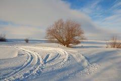Cielo e invierno Fotografía de archivo