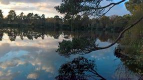 Cielo e nuvole che riflettono in uno stagno Fotografie Stock Libere da Diritti