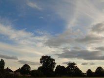 Cielo ed alberi di luccichio in parco di Hertfordshire Immagini Stock Libere da Diritti