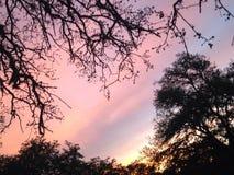 Cielo en colores pastel Imagen de archivo libre de regalías