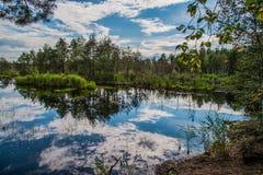 Cielo en el agua Foto de archivo libre de regalías