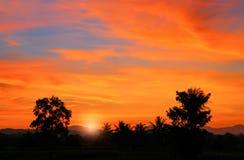 Cielo en hermoso colorido de la nube de la puesta del sol con el árbol de la silueta en arbolado Fotos de archivo libres de regalías