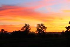Cielo en hermoso colorido de la nube de la puesta del sol con el árbol de la silueta en arbolado Fotografía de archivo libre de regalías
