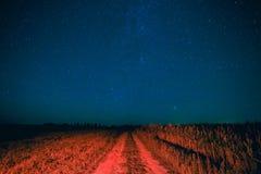 Cielo estrellado de la noche sobre la carretera nacional en campo y campo verde Foto de archivo