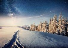 Cielo estrellado en noche nevosa del invierno Vía láctea fantástica en el ` s Eve del Año Nuevo Noche nevosa del invierno del cie Fotos de archivo