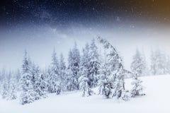 Cielo estrellado en noche nevosa del invierno Vía láctea fantástica en el ` s Eve del Año Nuevo Noche nevosa del invierno del cie Foto de archivo libre de regalías