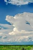 Cielo grande en el río de Chobe Fotos de archivo